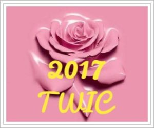 twiceの来日ライブ2017!会場(東京体育館)の行き方!服装と持ち物も2